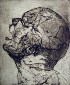 head-ii-colloagraptorhildyard